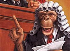 """Результат пошуку зображень за запитом """"Анекдоты про юристов и законы"""""""