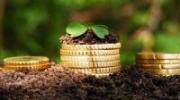 Льготников могут освободить от уплаты земельного налога