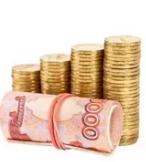 Отличительные особенности ссуды и кредита